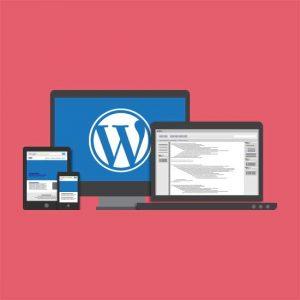Best Wordpress Development UAE, Dubai, Sharjah, Abu Dhabi